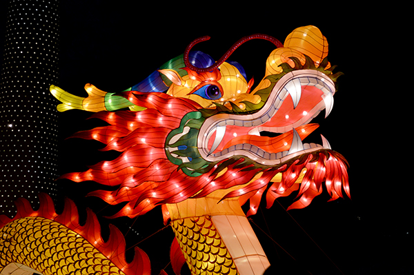 Dragon at the Chinese Lantern Festival